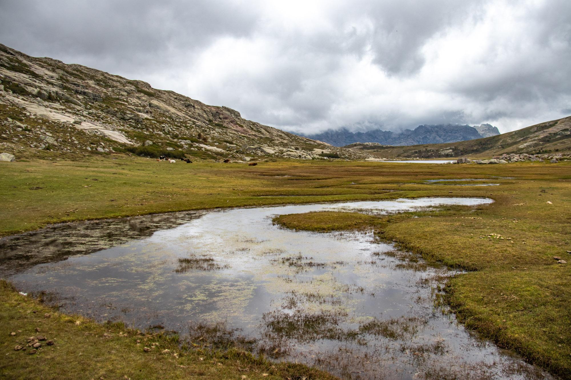 lac-de-nino-bergmeer-corsica