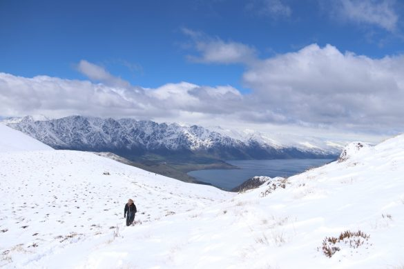 Ben Lomond Track (tot Saddle) bij Queenstown