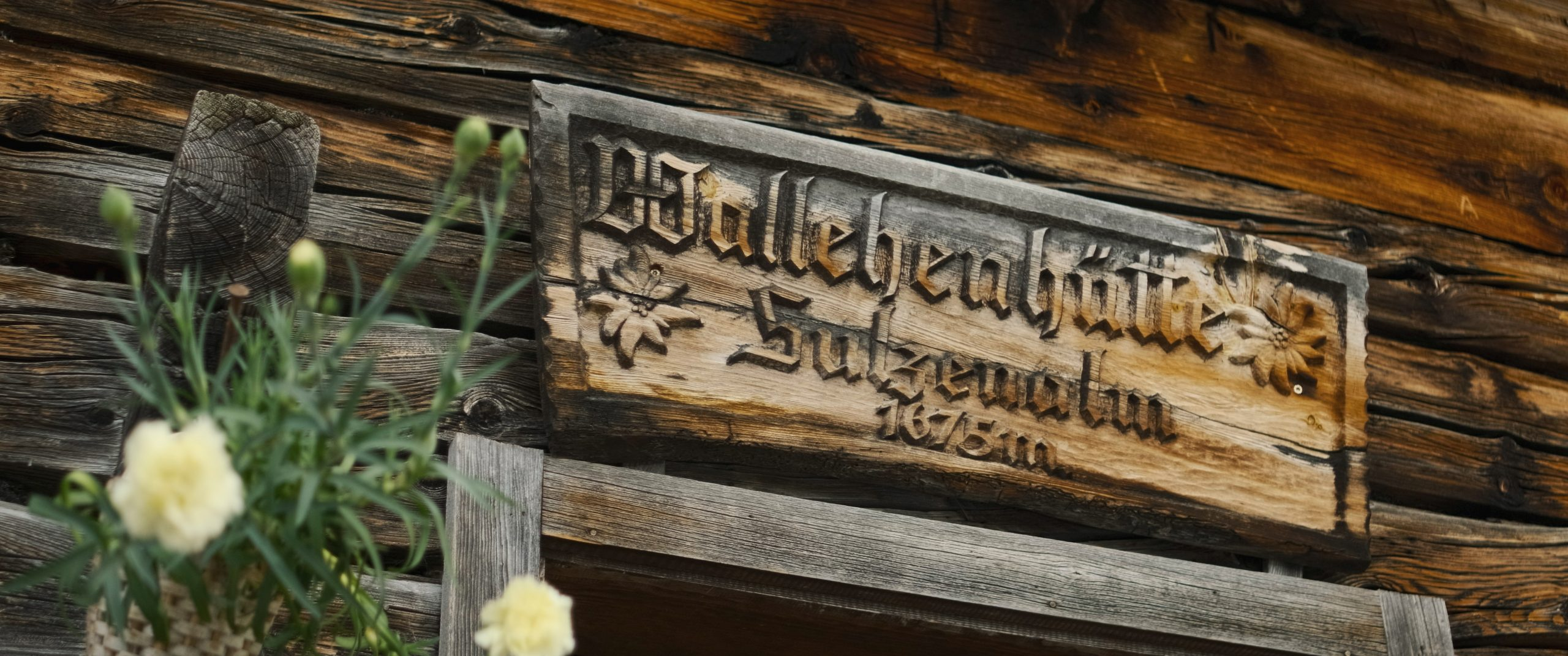 Hofalmen-Sulzenalm-Wallehenhutte-Filzmoos