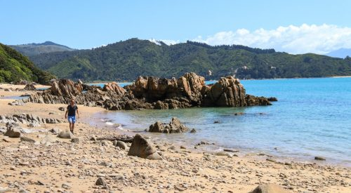 Wandelen in Abel Tasman National Park: Wainui Bay Carpark naar Taupo Point