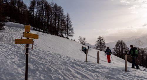 Sneeuwschoenwandeling vanaf de Col du Télégraphe naar Les Trois Croix