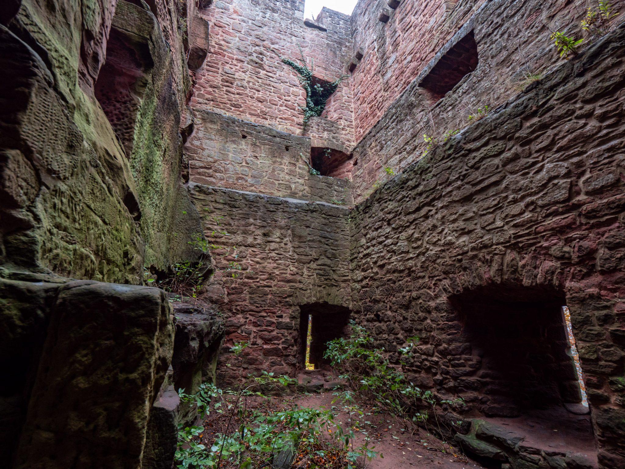 wandelen-kasteel-falkenstein-vogezen
