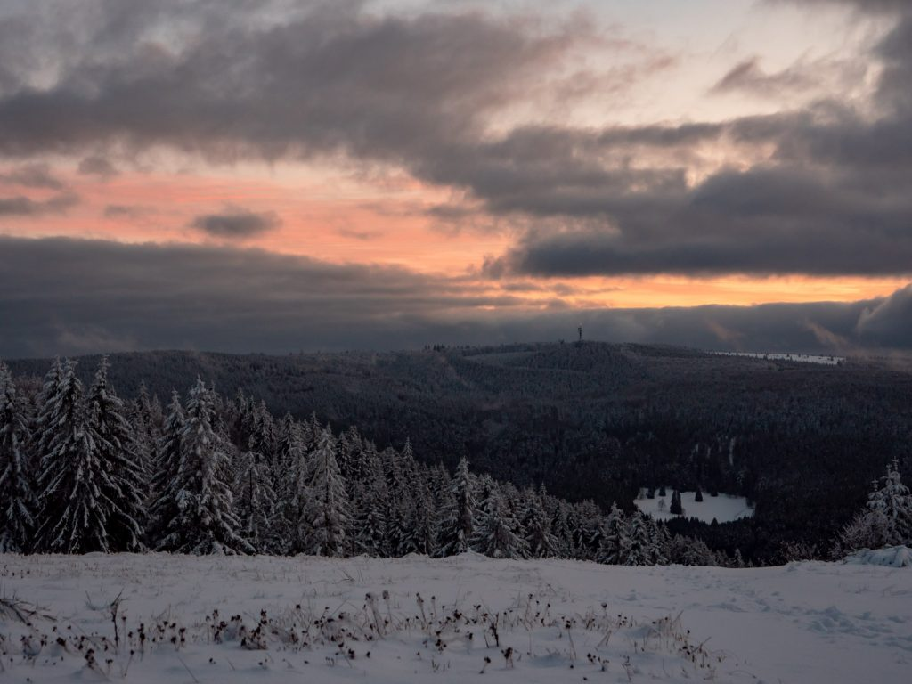 vogezen-november-sneeuw