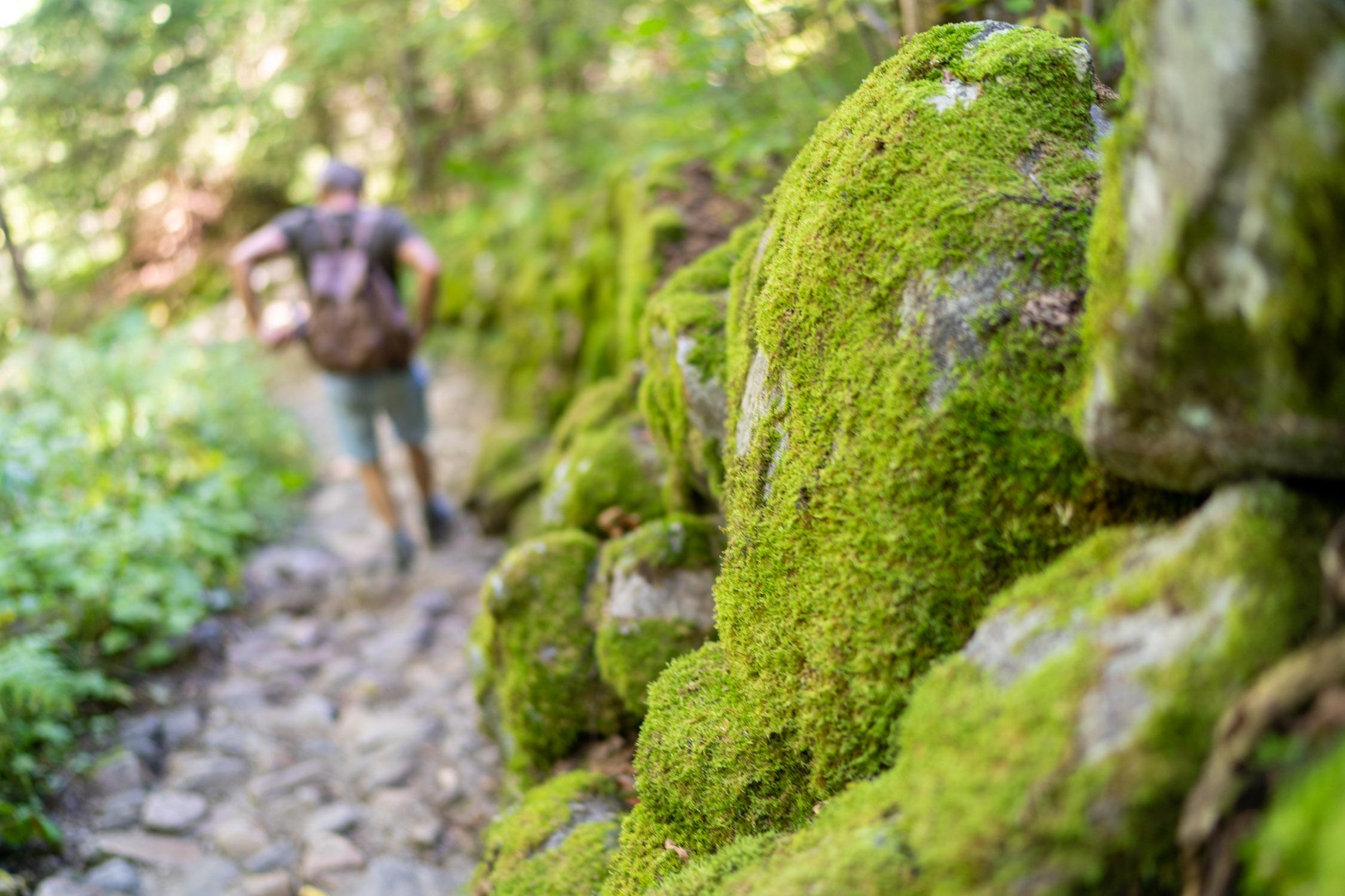 wandeling-lac-lauvitel