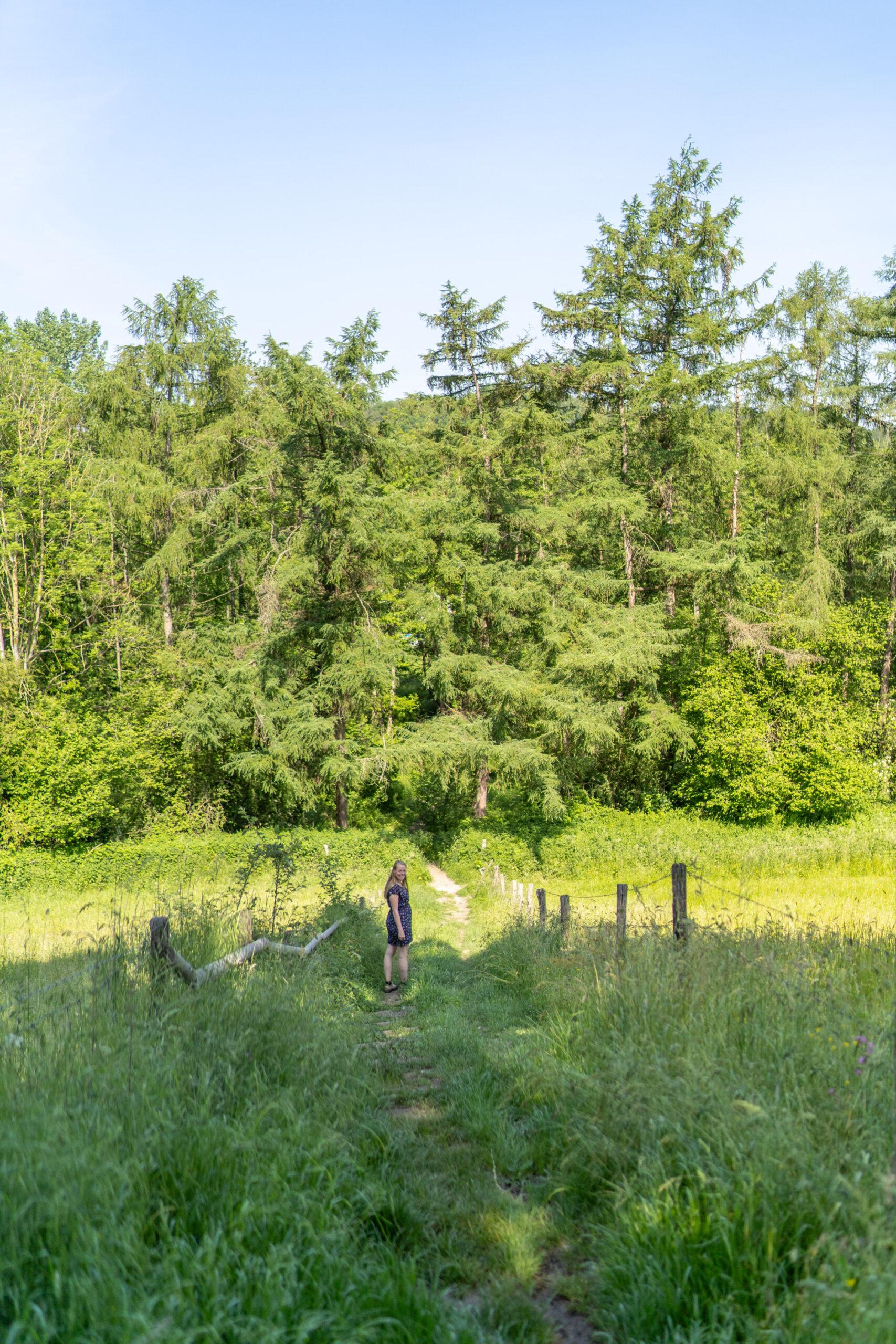 gulpdal-groote-bosch-slenaken