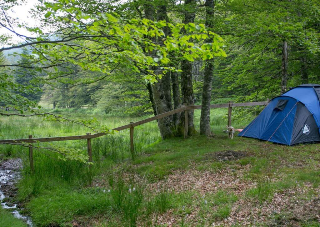 camping-foret-iraty-larrau